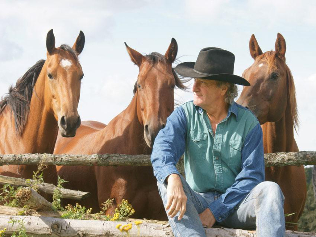 www.heide-horseback-riding.de